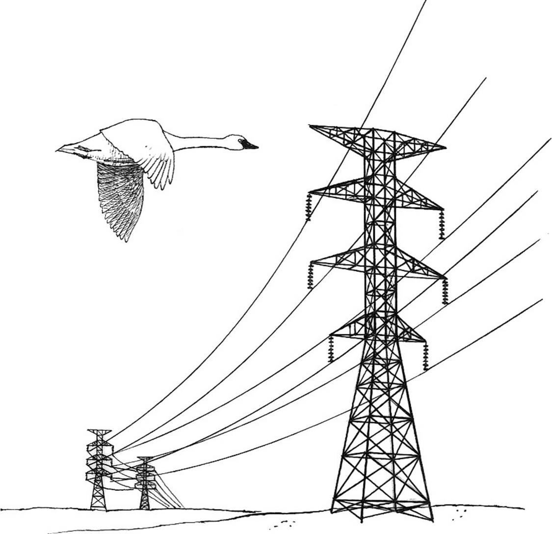 181212送電線