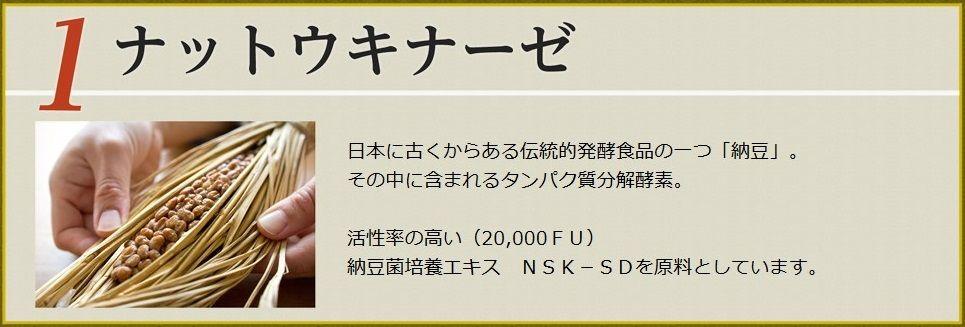 WS000434