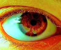 200px-Menschliches_Auge.jpg