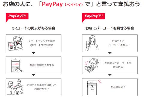 payapy4