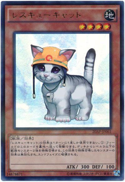 card100047613_1