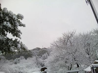 2010雪の元旦
