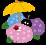 紫陽花にカタツムリ