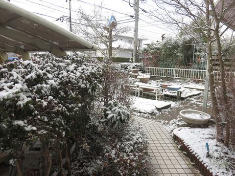 1月14日初冠雪2