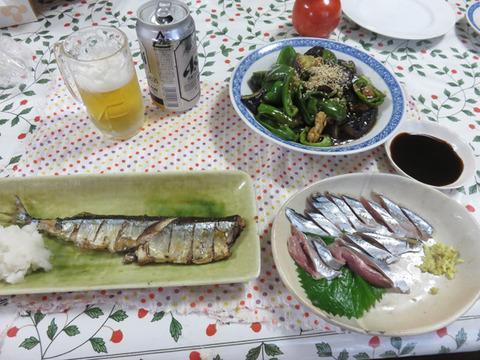 8月20日今日も秋刀魚