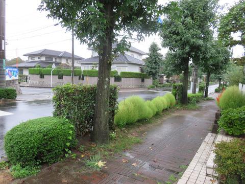 9月18日雨