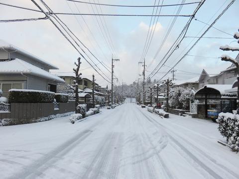 1月15日雪 (2)