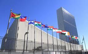 韓国市民団体が国連で訴え「日本政府は朝鮮学校への差別を止めろ」