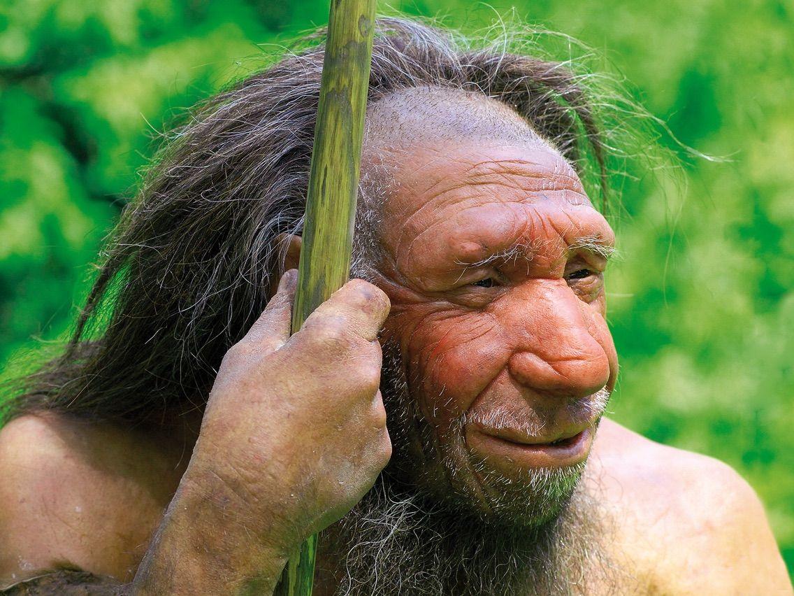 ジオちゃんねるネアンデルタール人のDNAに現生人類のDNAの痕跡コメントする