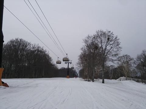 f986a31a.jpg
