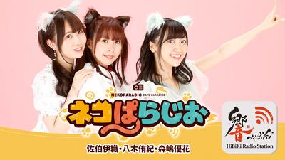 ネコぱら_ラジオ
