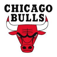 bulls rogo