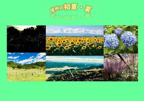 ブログ用 信州の夏