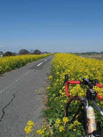 自転車板写真部 58枚目YouTube動画>5本 ->画像>81枚