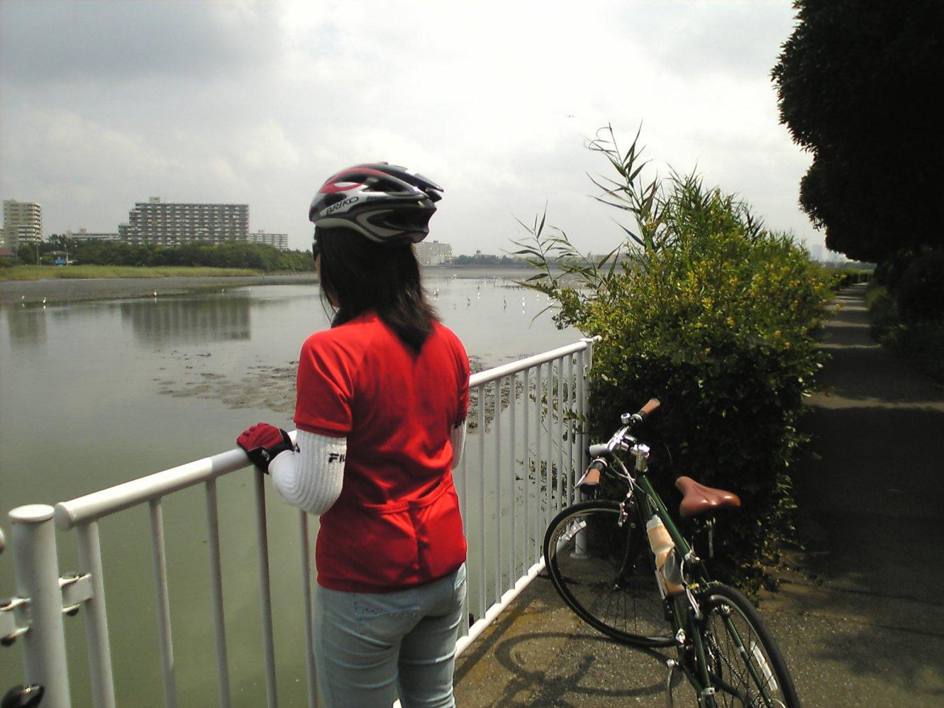 自転車の 自転車 カロリー : ... 消費カロリー<摂取カロリー