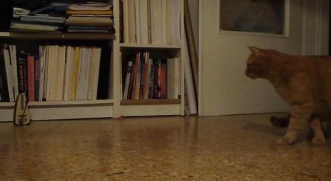 猫 メトロノーム00