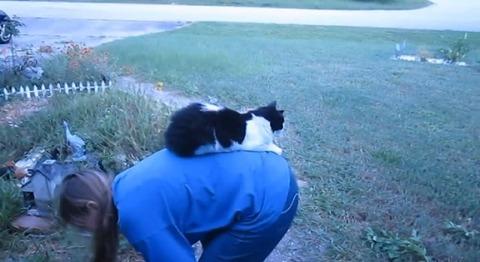 猫 花壇で背中に乗られる06