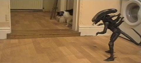 猫 vs Alien02