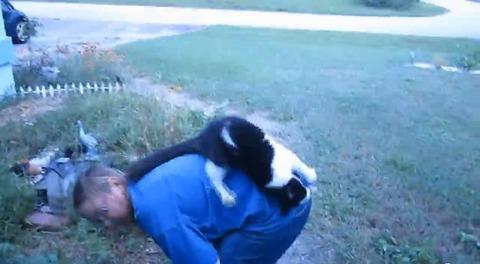 猫 花壇で背中に乗られる07