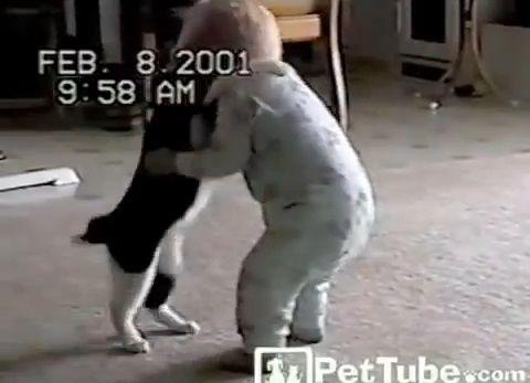 猫 赤ちゃんと取っ組み合い03