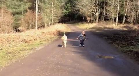 犬 子供と散歩で水溜り00