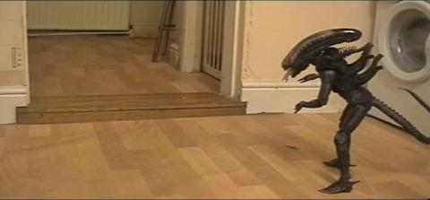 猫 vs Alien08
