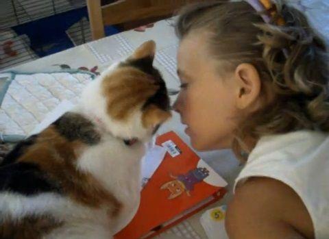 猫 女の子にスリスリ00