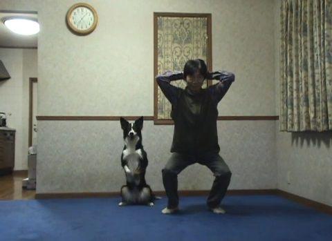 犬 スクワット02