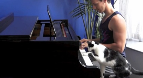 猫 ピアノを一緒に01