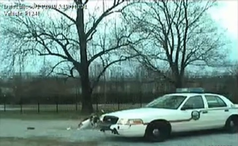 犬 パトカーのバンパー破壊04