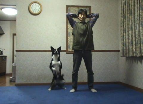 犬 スクワット01