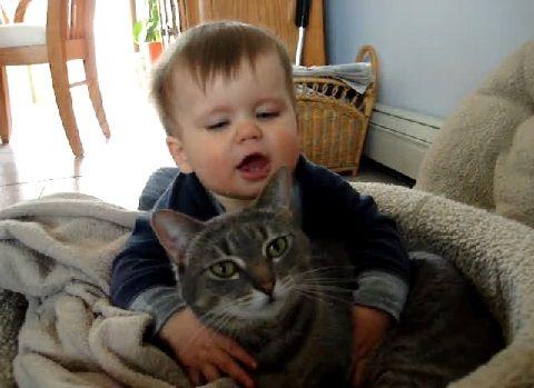猫 赤ちゃん・猫大好き02