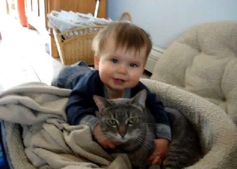 猫 赤ちゃん・猫大好き00