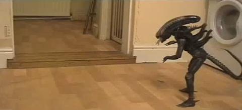 猫 vs Alien01