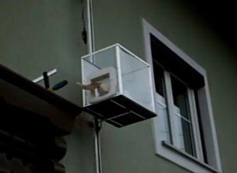 猫 ねこベーター01
