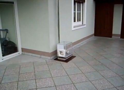 猫 ねこベーター04