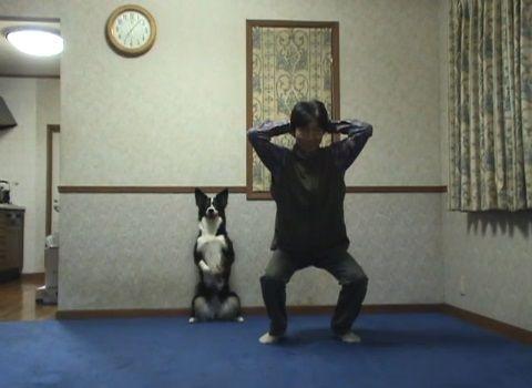 犬 スクワット04