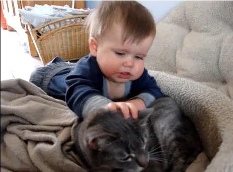 猫 赤ちゃん・猫大好き05