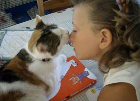 猫 女の子にスリスリ01