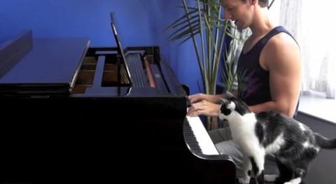 猫 ピアノを一緒に00