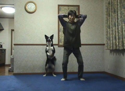 犬 スクワット03