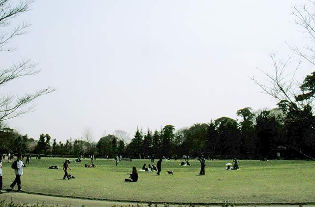 井の頭公園 西園