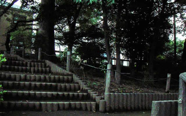 ニリン草公園