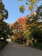 image1 - コピー (14)
