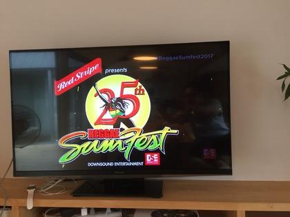 Reggae Sumfest 2017。