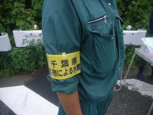 水生生物調査H27 (5)