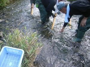 水質調査H25 (6)