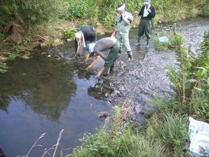 水質調査H25 (3)