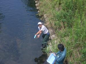 水質調査2014 (10)