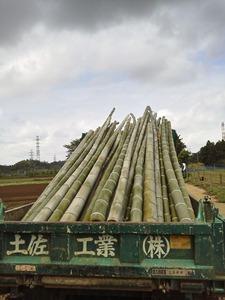 竹日除け製作 (3)